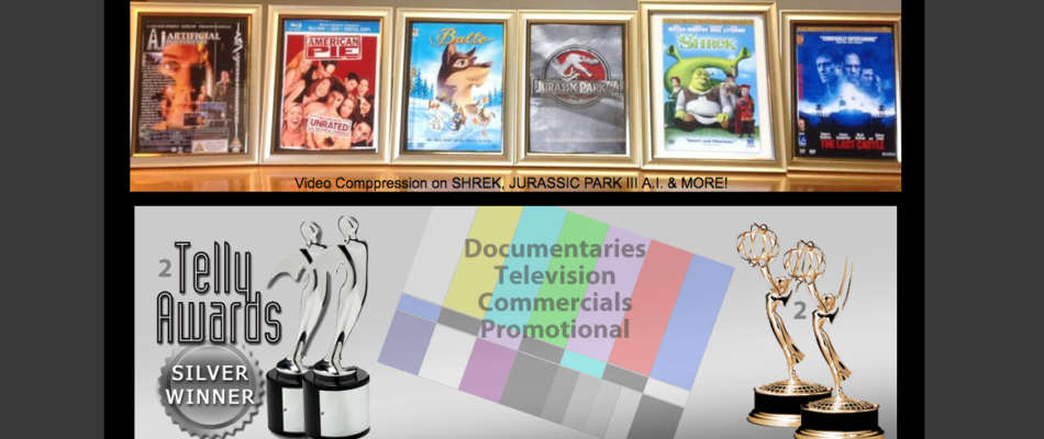 Moonvideo.com, Award Winning Video Production